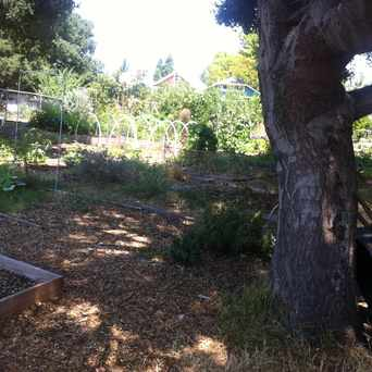Photo of Temescal Community Garden in Longfellow, Oakland