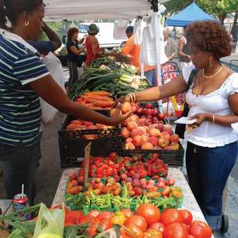 Photo of Farmer's Market in East New York, New York