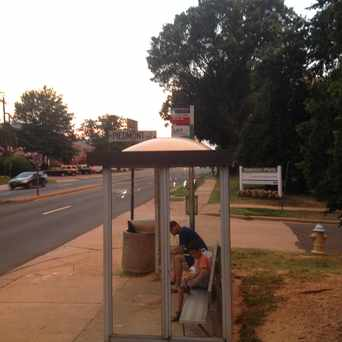 Photo of Bus Stop: North Glebe & Piedmont in Buckingham, Arlington