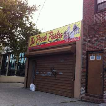 Photo of Pooch Parlor in Canarsie, New York