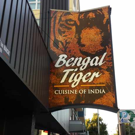 Photo of Bengal Tiger in Roosevelt, Seattle