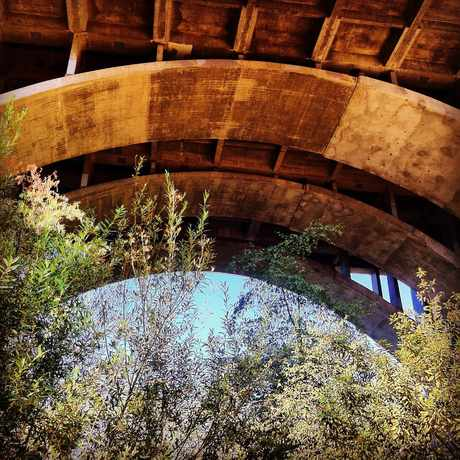 Photo of Colorado Street Bridge, Pasadena, Ca in Lower Arroyo, Pasadena