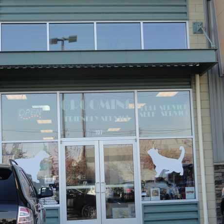 Photo of Desilu's Pet Boutique LLC in Mukilteo