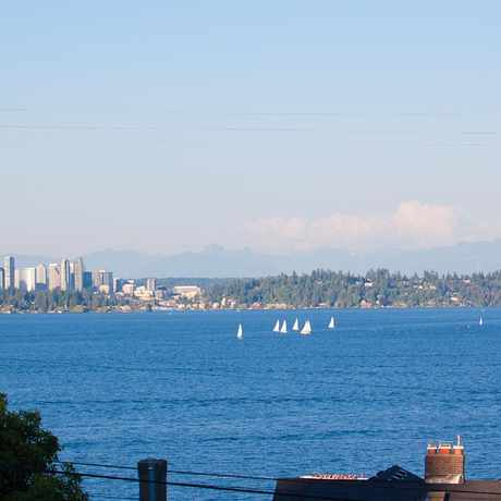 Photo of Leschi in Leschi, Seattle