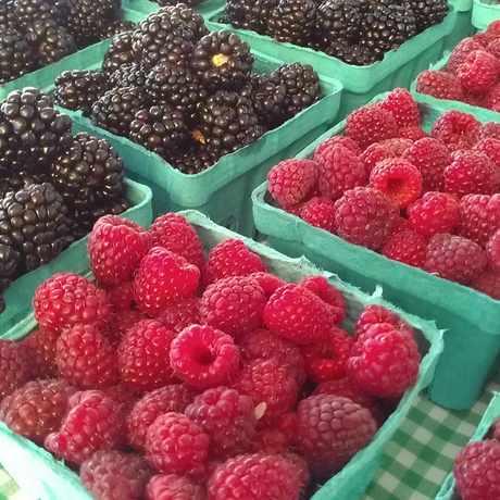Photo of Lloyd Farmers Market in Lloyd District, Portland