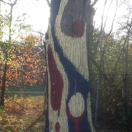 Photo of Painted Tree in Cleveland Heights