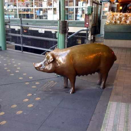 Photo of Rachel in Downtown, Seattle