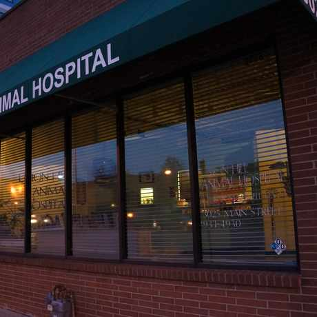 Photo of Union Hill Animal Hospital in Union Hill, Kansas City