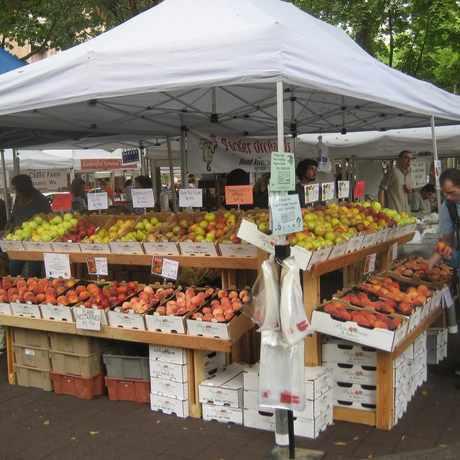 Photo of Shemanski Park Farmers Market in Downtown, Portland
