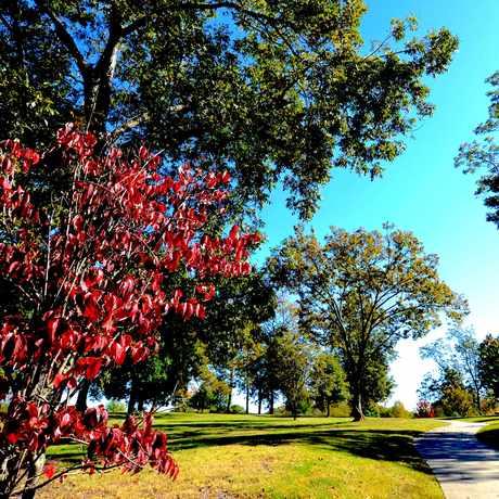 Photo of Freedom Park in Atlanta