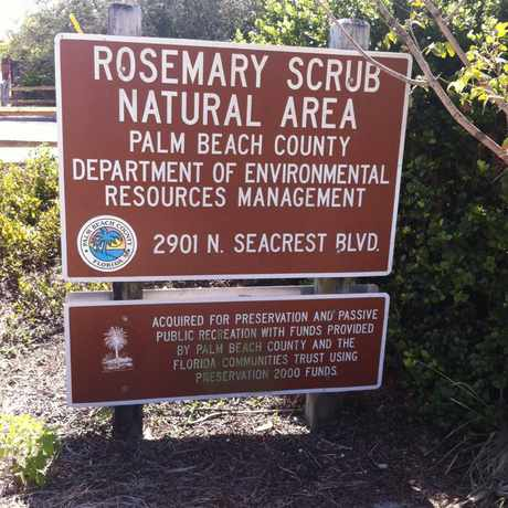 Photo of Rosemary Scrub Natural Area in Boynton Beach