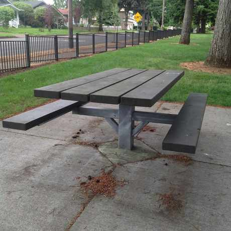Photo of Tree Covered Picnic Area in Carter Park, Vancouver