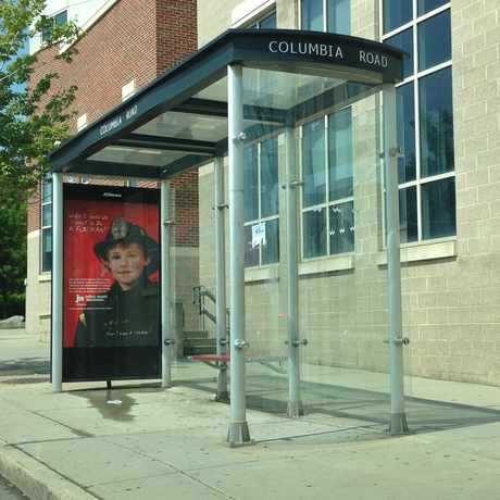 Photo of Local Bus Stop in Dudley - Brunswick King, Boston
