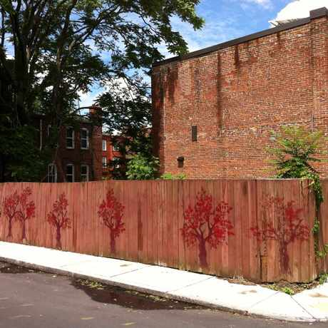Photo of Sussex Street Mural in Lower Roxbury, Boston