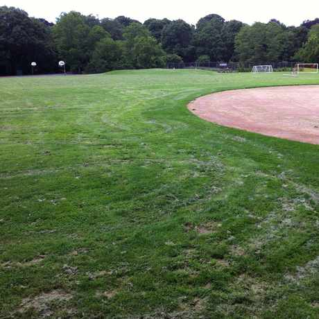 Photo of Coldspring Park Fields & Courts in Newton