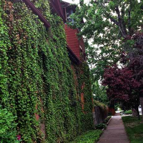 Photo of Near E Center Ave & S Pearl St in Washington Park West, Denver