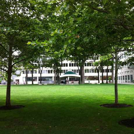 Photo of Technology Square in Cambridge