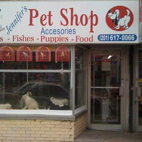 Photo of Jennifer pet shop in Union City